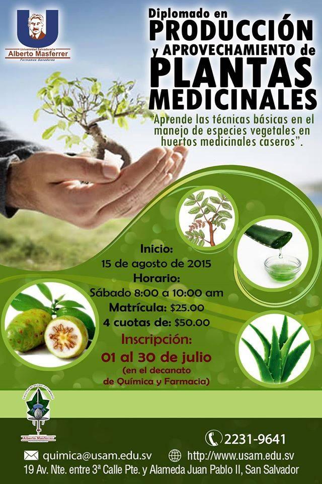 Inventa Qca y Farmacia curson Plantas