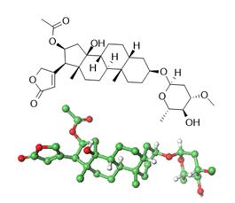 Oleandrina- La Molécula del Mes