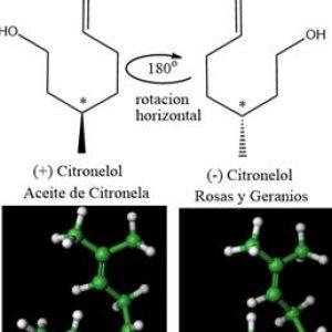 Molecula del mes Citronelol