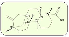Esteviol- Molécula del Mes