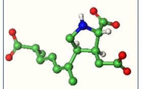 La Molécula del Mes:  Acido Domoico