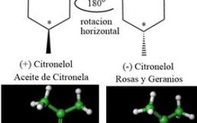 Citronelol – Molécula del Mes