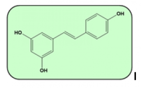 Resveratrol- La Molécula del Mes